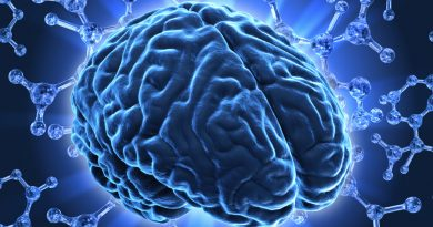Интересные факты о мозге 8