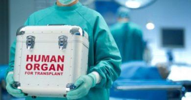 Трансплантология в России вышла на новый уровень